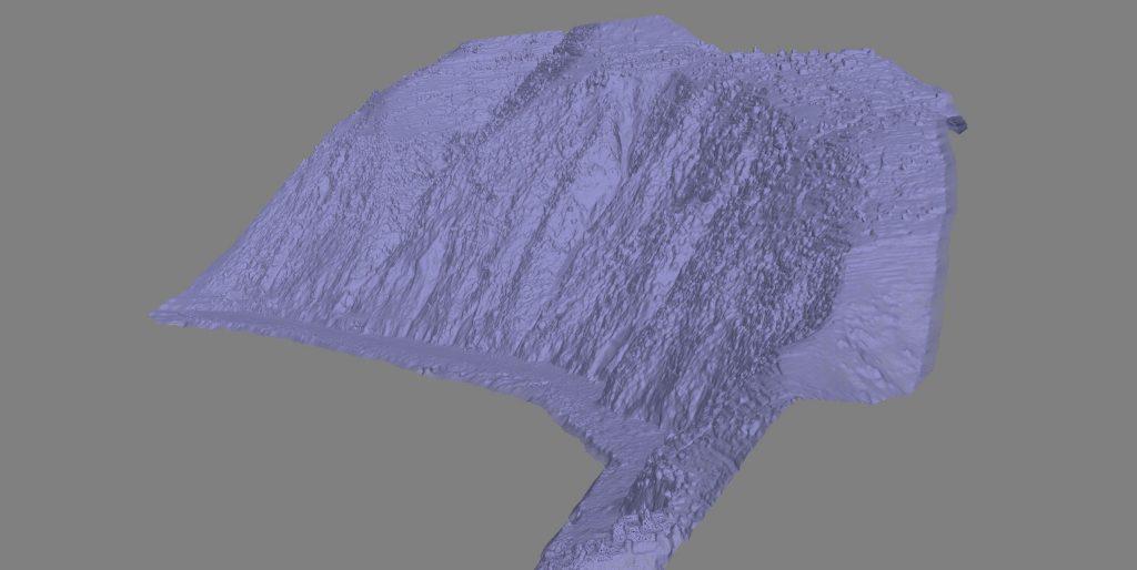 Immagine di una mesh triangolare di un modello 3D