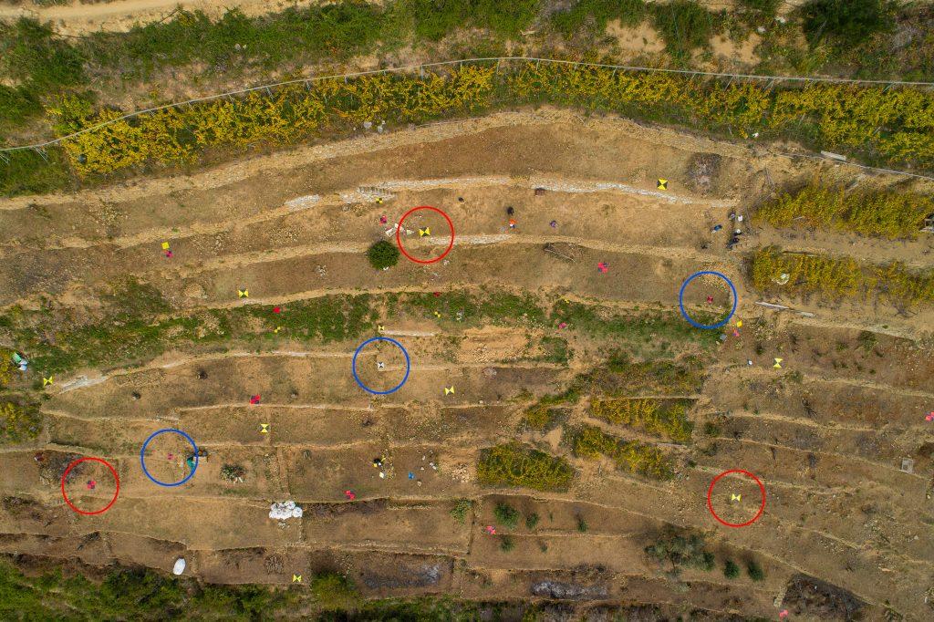 Immagine nadirale da drone in cui sono visibili differenti tipi di target artificiali a terra in area terrazzata