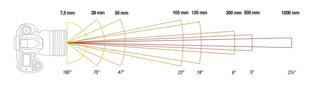 Immagine che mostra il rapporto tra lunghezza focale ed angolo di campo per differenti ottiche