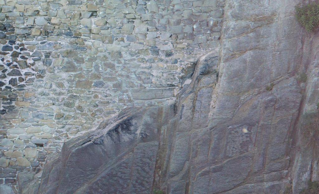 Immagine che rappresenta una porzione di ortomosaico ad alta definizione della parete verticale ricavata dalle foto del Phantom 4 Pro - ingrandimento al 100%