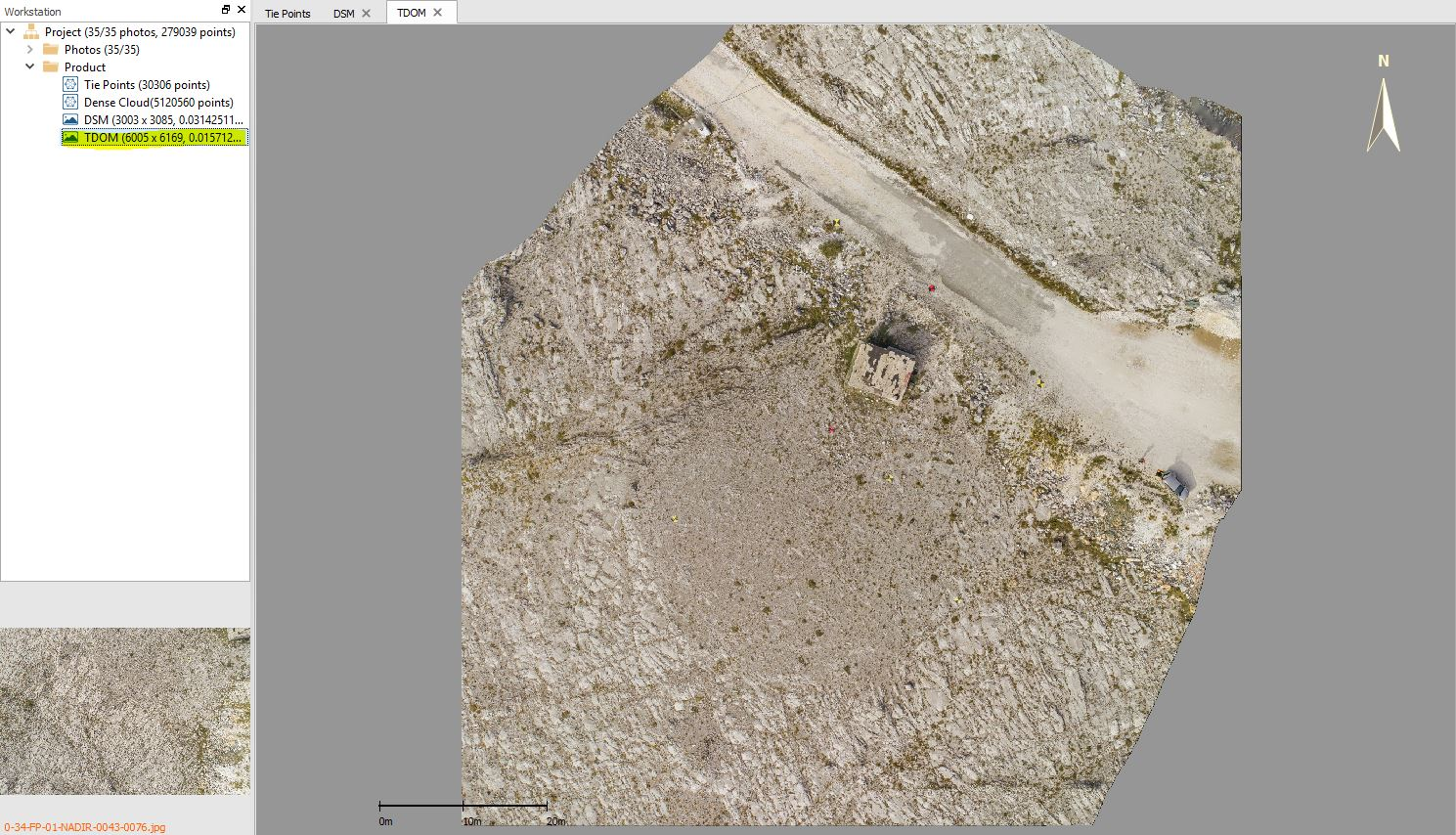 Immagine di un ortomosaico elaborato in LiMapper